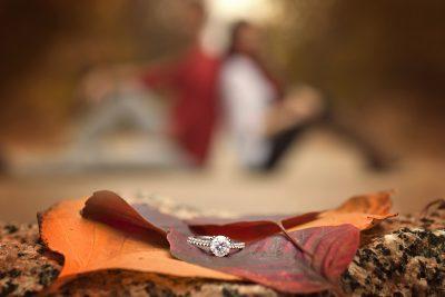 fall jewellery ring